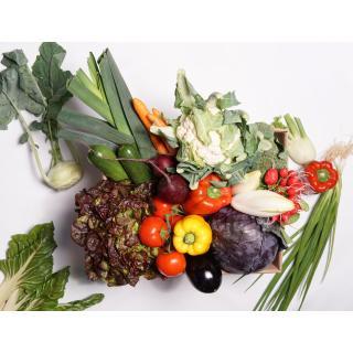 Gemüsekiste  S